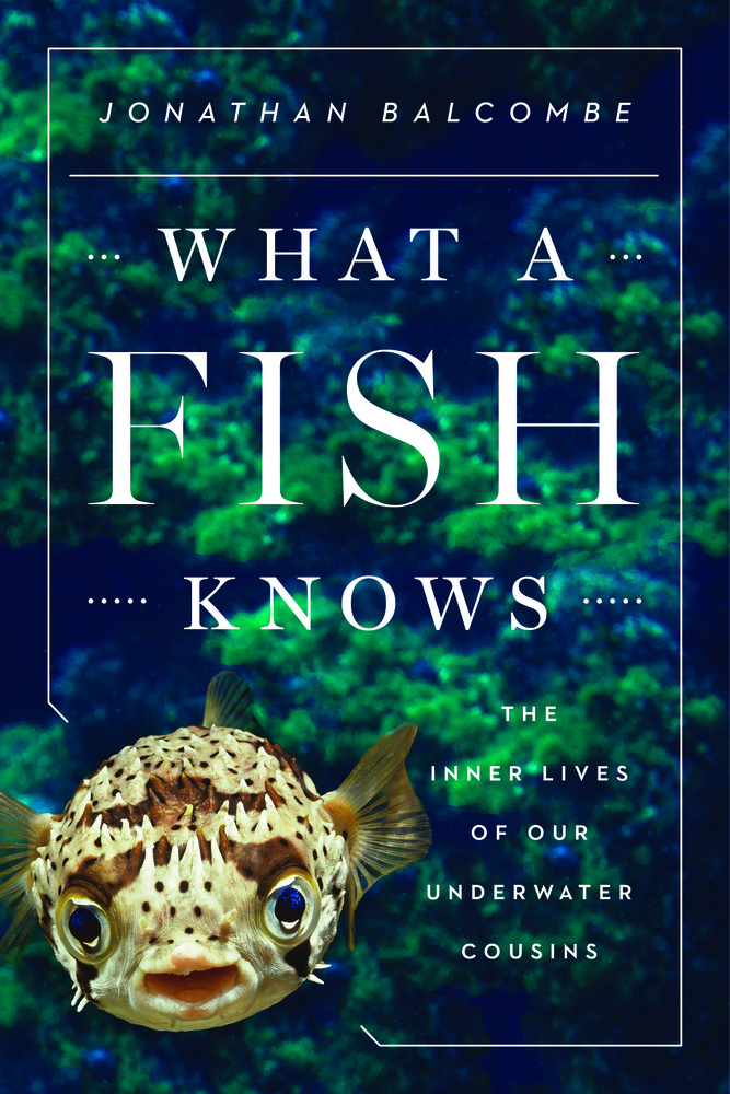 balcombe-what-fish-knows